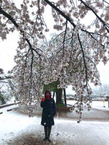 町田 ボイストレーニング 歌声 川島由美 介護予防 ボイトレ